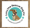 LUCY THE RESCUE DOG INC.